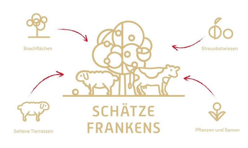 Das Logodesign von Schätze Frankens beinhaltet die Naturthemen des Projektes
